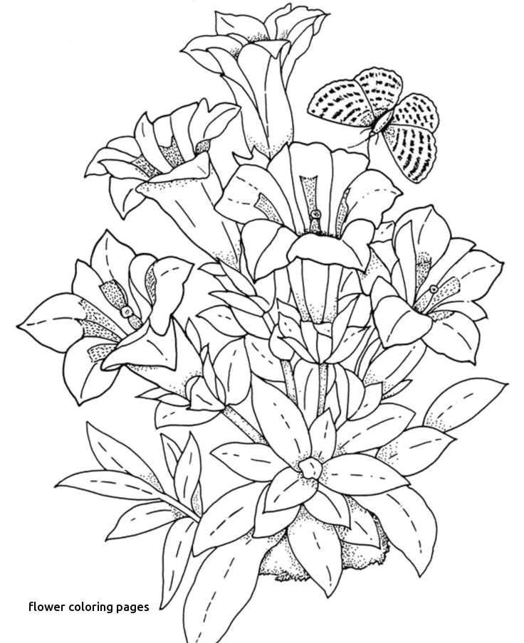 drawing of flowers step by step elegant drawings flowers s s media cache ak0 pinimg originals 0d