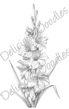 gladiolus flower tattoo drawings similar galleries gladiolus flower