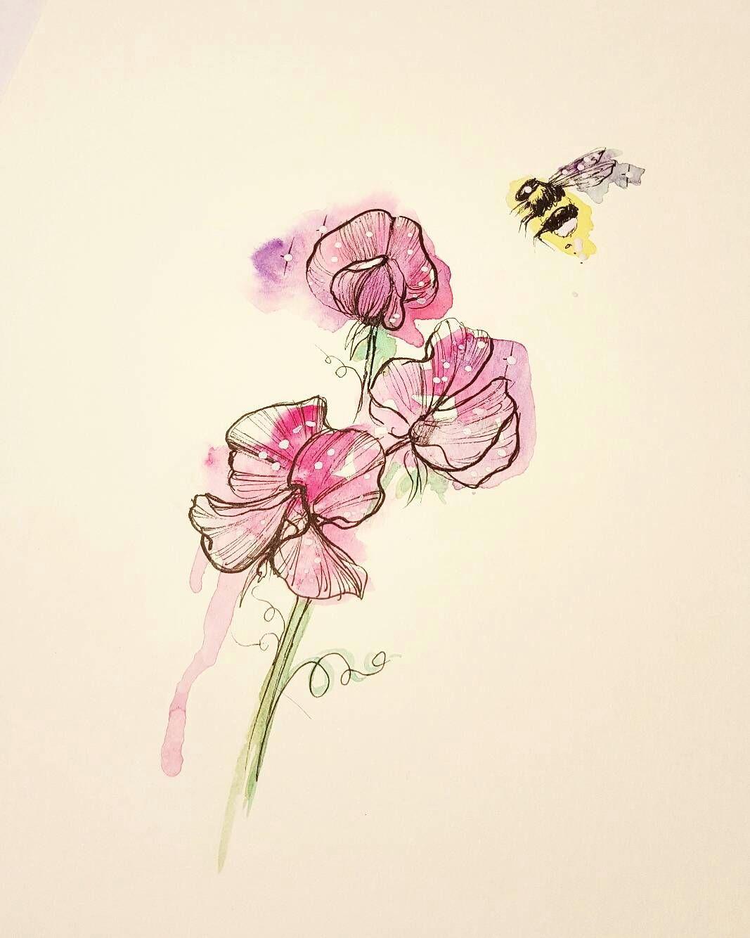 sweet pea bee d watercolourart watercolour windsorandnewton illustration sweetpea sweetpeatattoo beesofinstagram bee beetattoo
