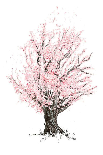 commission cherry tree in 2019 photos pinterest drawings art and blossom trees
