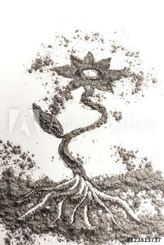 flower plant drawing illustration concept made od ash dust san
