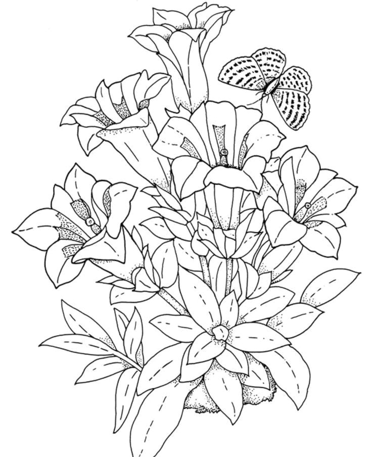 download and print realistic flowers coloring pages for the top adult coloring books and writing utensils including gel pens watercolors