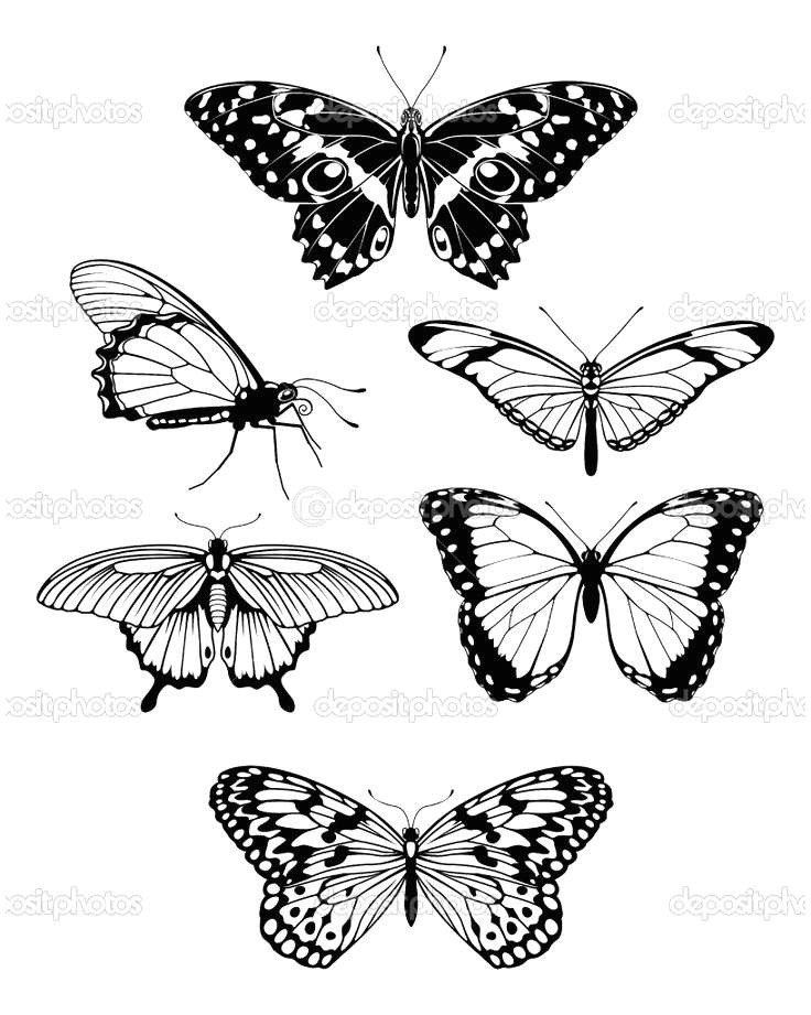 7 ways to keep your drawings of flowers and butterflies growing without burning the midnight oil