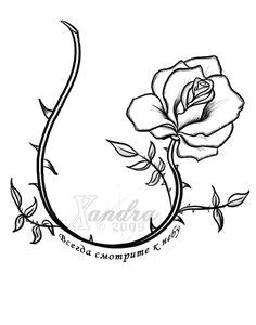 rose vine tattoos designs the rose vine tattoo flash by xandra