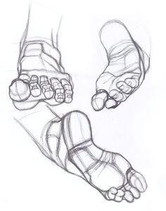drawing studies art studies foot anatomy anatomy study anatomy art anatomy