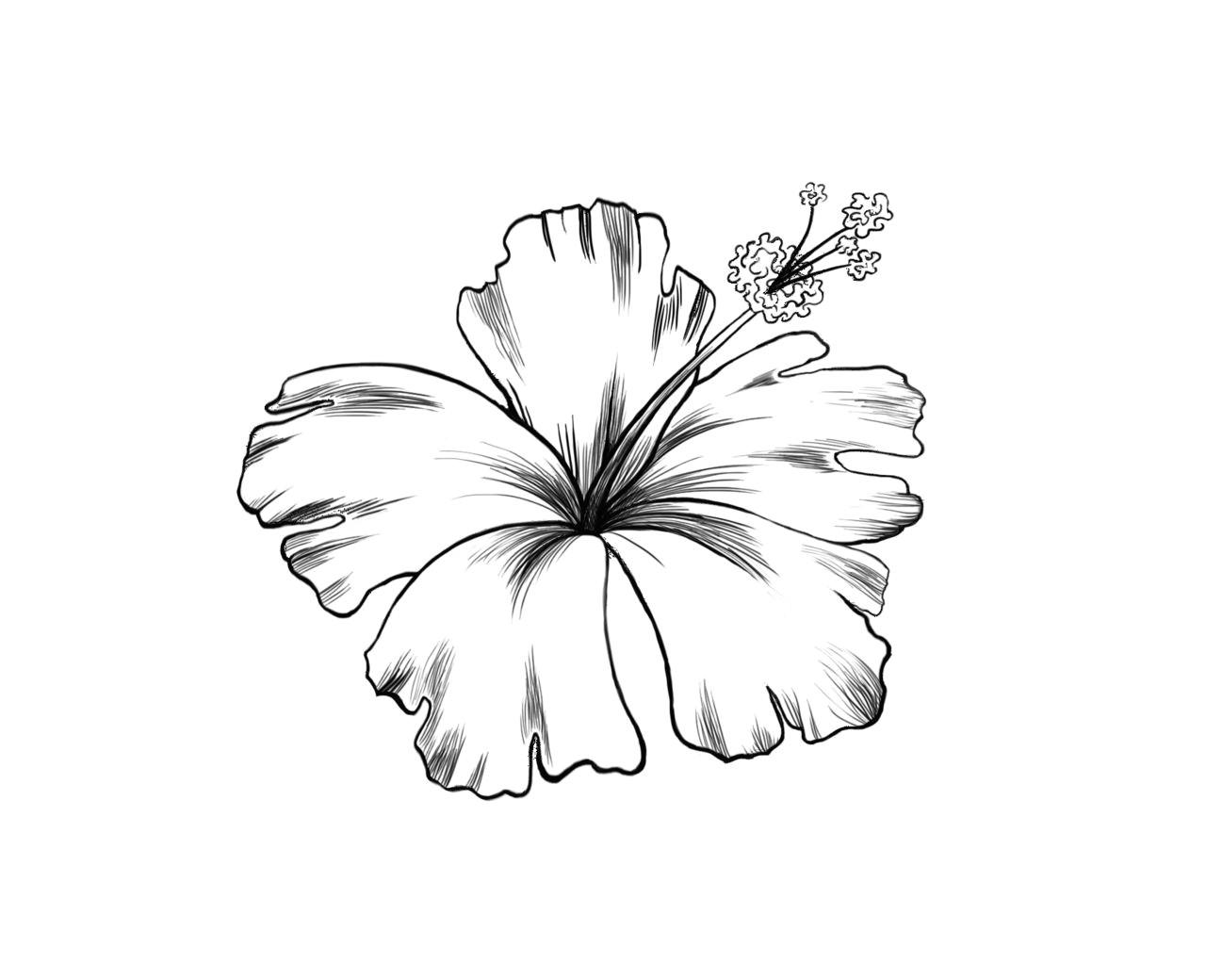 jeremiah dube photo hawaii flower tattoos hibiscus flower tattoos hawiian flower tattoo