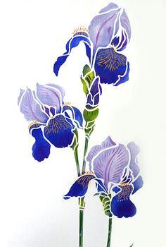 iris stencils 1 and 2 iris drawing iris flowers bird stencil flower stencils