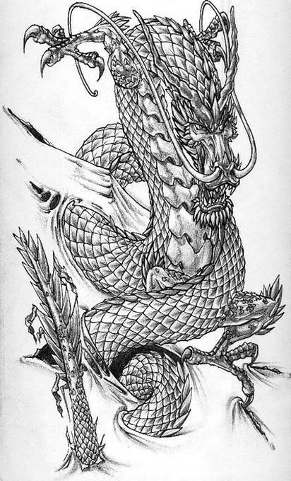dragon tattoos designs dragon tattoo art chinese dragon tattoos dragon tattoo designs pin