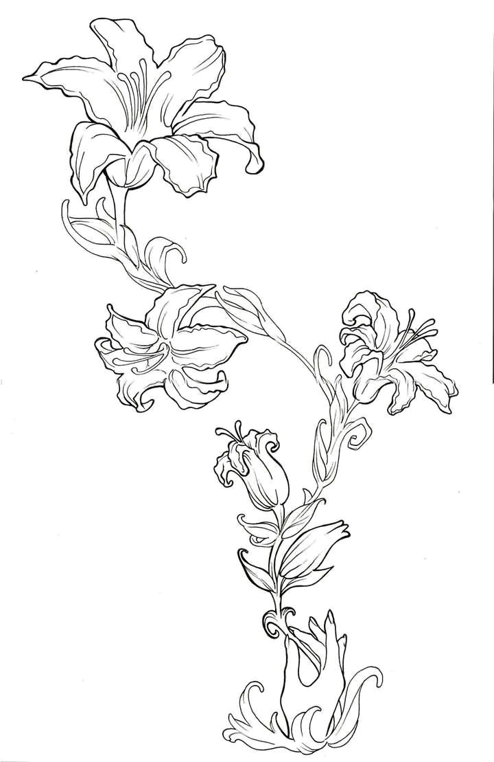 beautiful outline lily flowers tattoo design