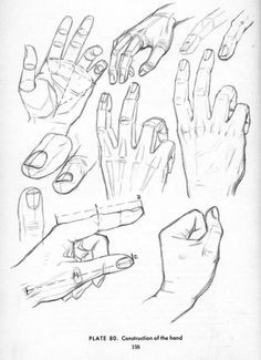 drawing hands hand reference anatomy reference drawing reference drawing lessons drawing techniques
