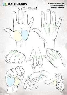simplified anatomy 05 male hands
