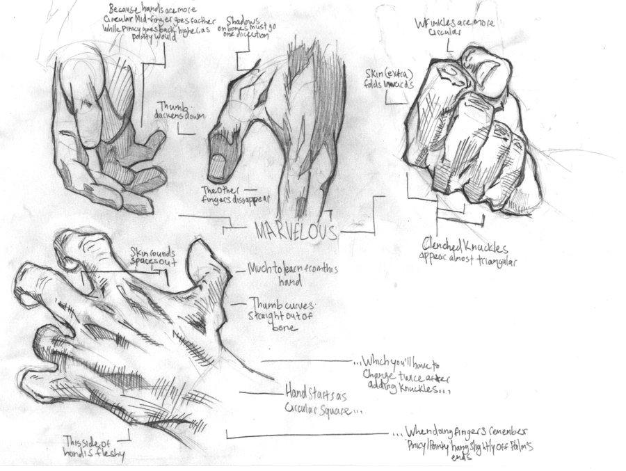 illustrations a hand study by thetrainingartist on deviantart