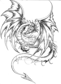 medieval dragon coloring pages coloring pages pictures imagixs