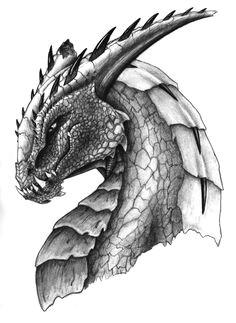 coloring for adults kleuren voor volwassenen dragon head drawing dragon drawings dragon sketch