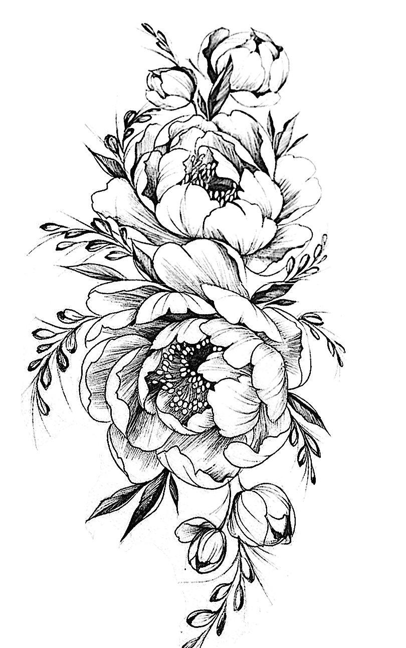 tattoovorlage peony drawing chrysanthemum drawing flower design drawing flower drawings drawing flowers