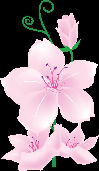 light pink flowers clipart