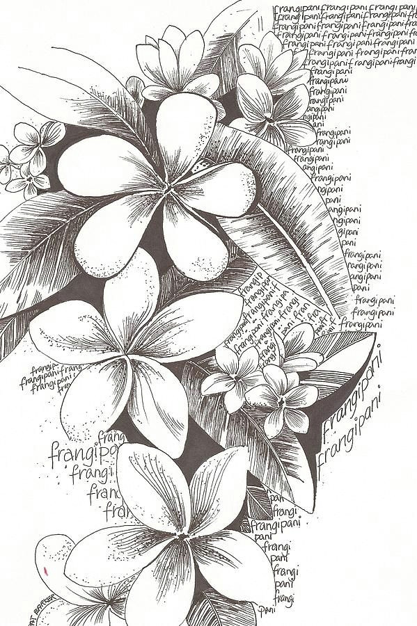 flowers drawing