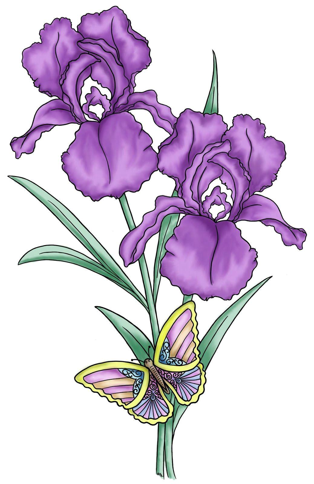flower drawings google search