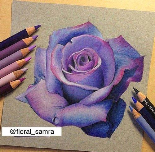 photo fb3c7287f483366c9c4e57e77a78aeb0 ap drawing drawing flickr