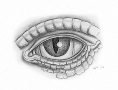 lizard s eye by saviourmachine lizard eye eye study my eyes reptiles bing