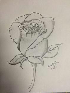 rose drawing rose drawings unique drawings couple drawings pencil drawings art drawings