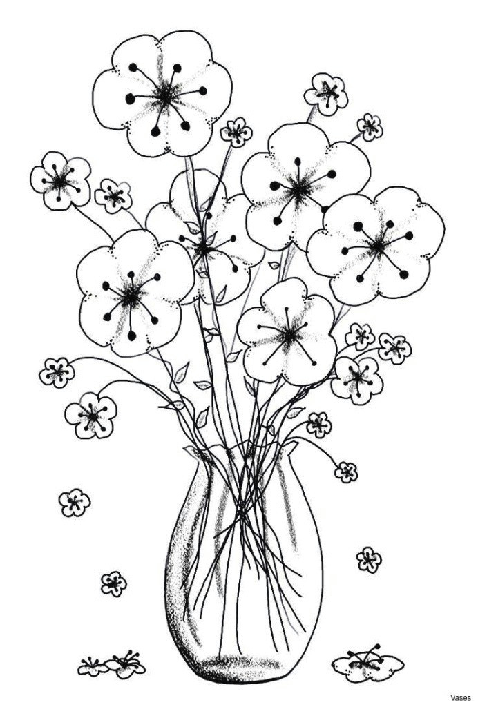 black and white rose coloring pages unique fresh cool vases flower vase coloring page pages flowers