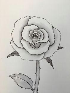 easy step by step tutorial easy flower drawings flower drawing tutorials cute drawings