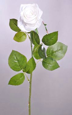 elegant open rose stem choose from 15 colors rose stem open rose stems