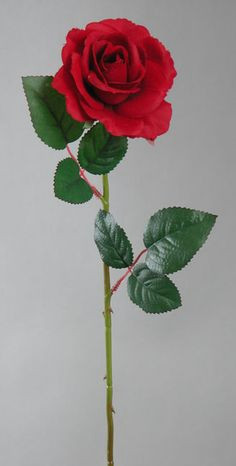 color fast open rose stem choose from 4 colors