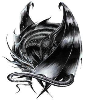 sleeping black dragon recreation lifestyle pinterest dragon black dragon and dragon art