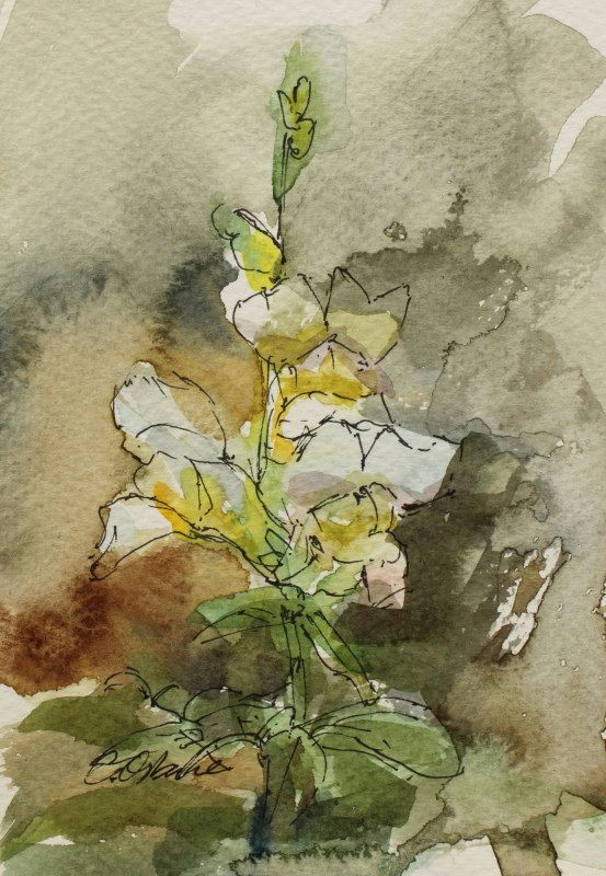 art card watercolour postcard flower painting 6x4in impression white snapdragon