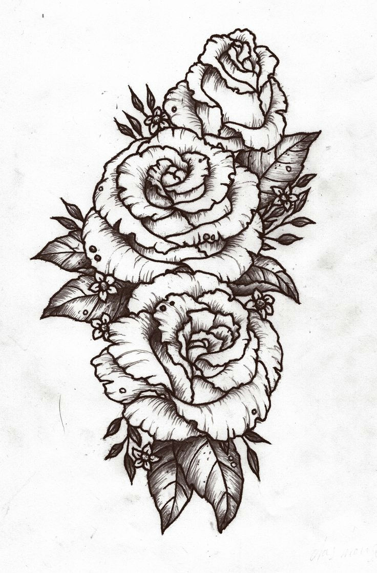 3 roses tattoo mannheim tattoo bird rosenranke tattoo tattoo 2017 tattoo drawings