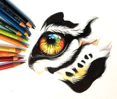 colorful tiger eye by lucky978 tiger drawing tiger sketch marker art eye art