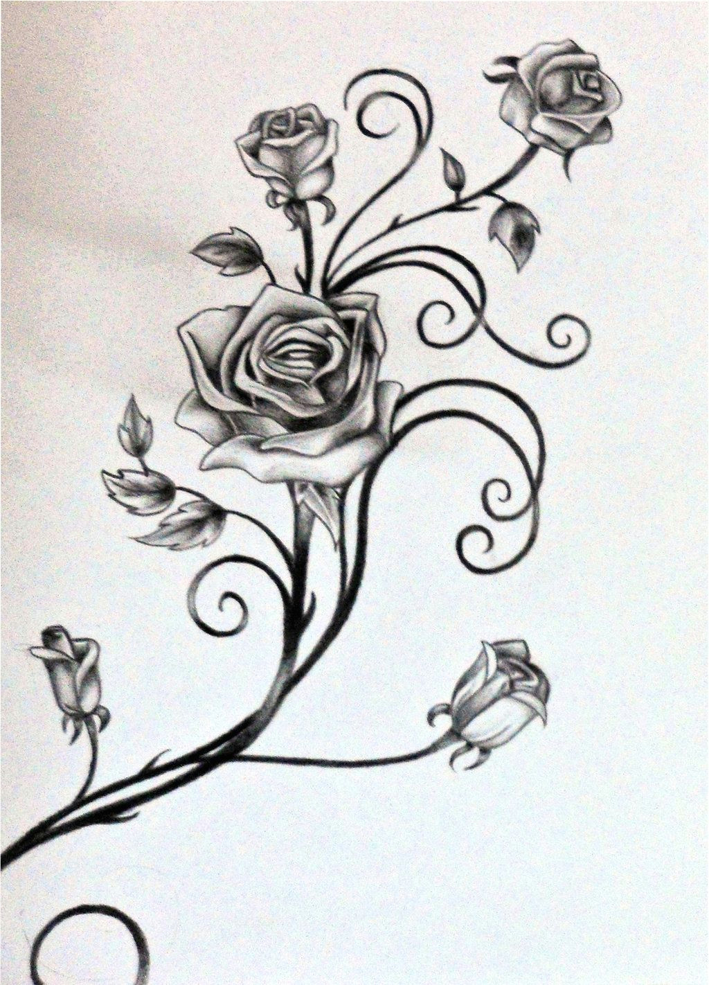 drawings of vines and leaves roses and the vine by rosilutfi