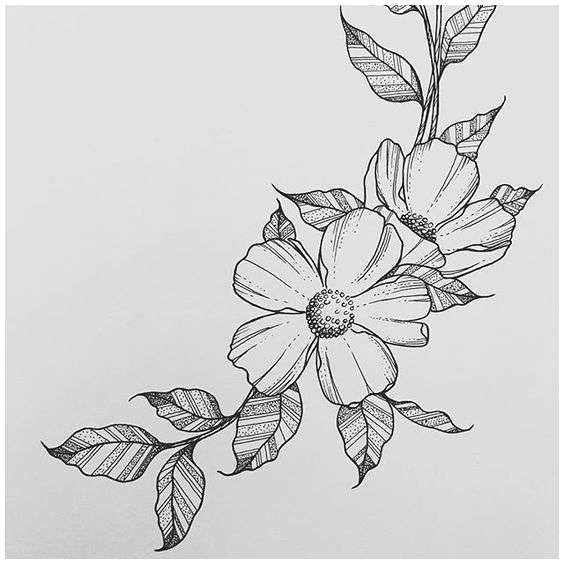 flowers drawings new drawings flowers s s media cache ak0 pinimg originals 0d 1d 64