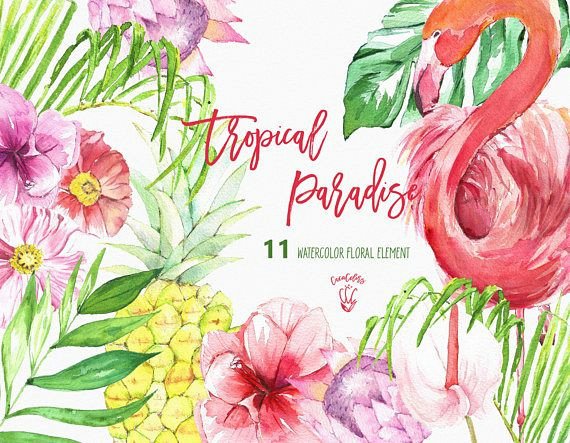 tropical clip art tropical floral clipart flamingo clipart