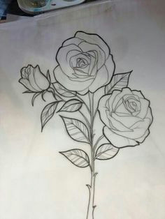 rose outline drawing rose drawing tattoo tattoo outline tattoo sketches rose drawings