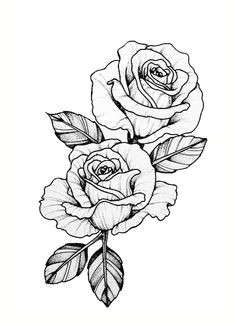amanda rose fowler i love you flowers drawn rose flowers rose sketch flower