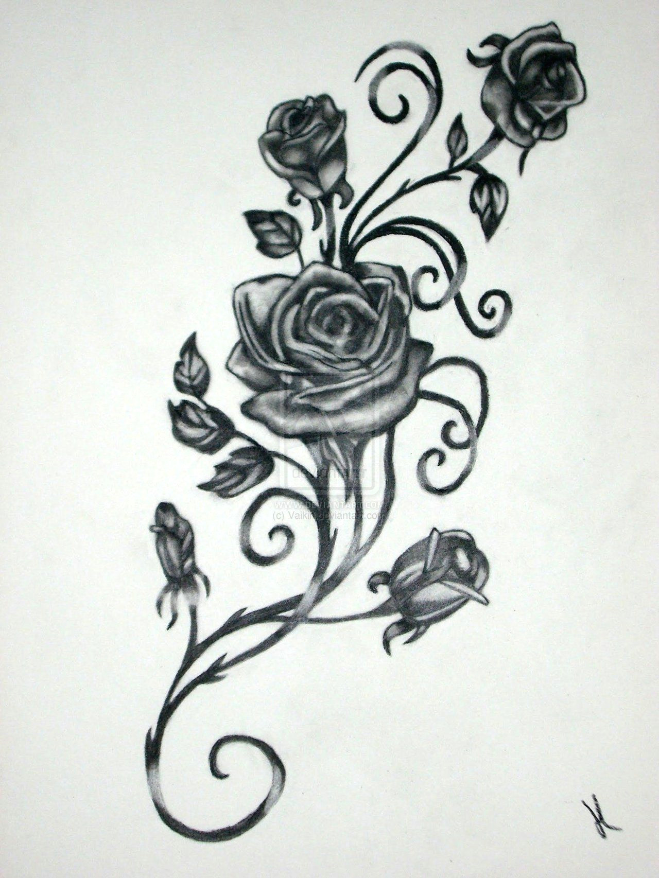 roses with vines drawing rose vine drawing black rose vine tattoos possible tattoo template