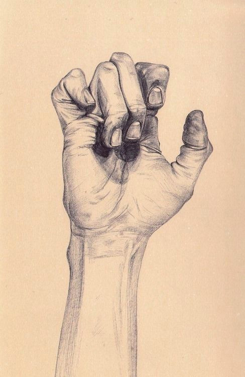 by henrietta harris hand drawings drawings of hands drawing hands figure drawings