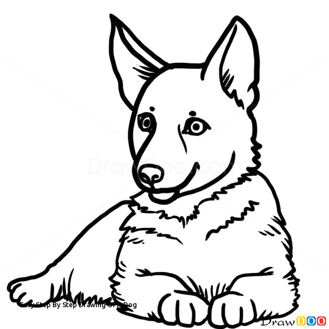Easiest Drawing Of A Dog Easy Step by Step Drawing Of A Dog How to Draw Puppy German Shepherd