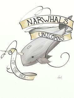daily drawing narwhals cute narwhal kawaii narwhal wale unicorns and mermaids