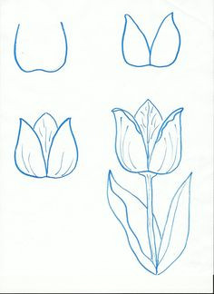 Easy Drawing for Class 12 361 Best Drawing Flowers Images Drawings Drawing Techniques