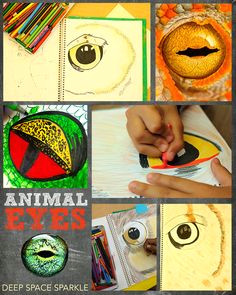 close up animal eyes art project for kids middle school art projects high school
