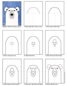 draw a polar bear