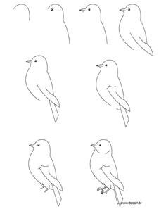 een leuke vogel hahah hij is wel makkelijk how to draw birds drawing birds easy