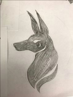 jackal logo sketches by doren