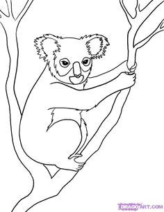 australian animals google search australian animals australian art drawing for kids line