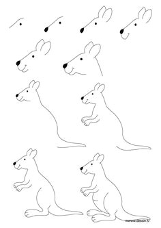 how to draw a kangaroo drawing lessons drawing tips art lessons drawing for