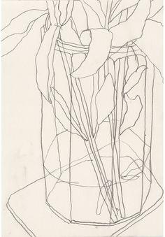 ae e a a contour line drawing line drawing art contour 2 simple line